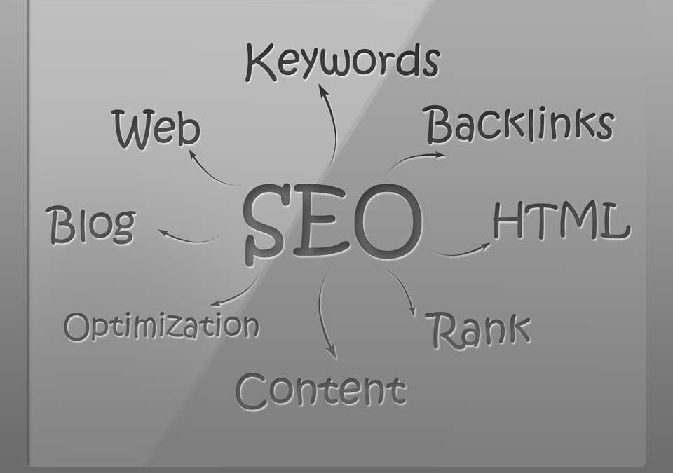 Why you are an SEO Champion.