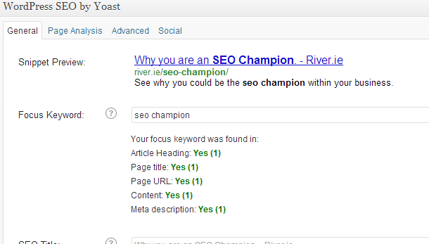Become the seo champion within your business